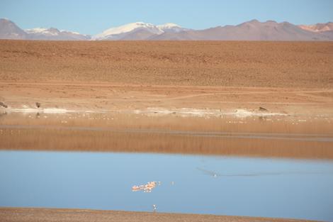 Laguna Sud Lipez