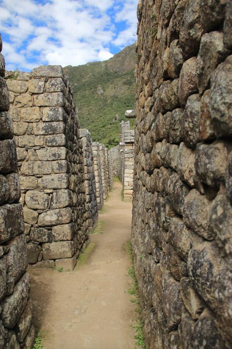 Un vrai labyrinthe