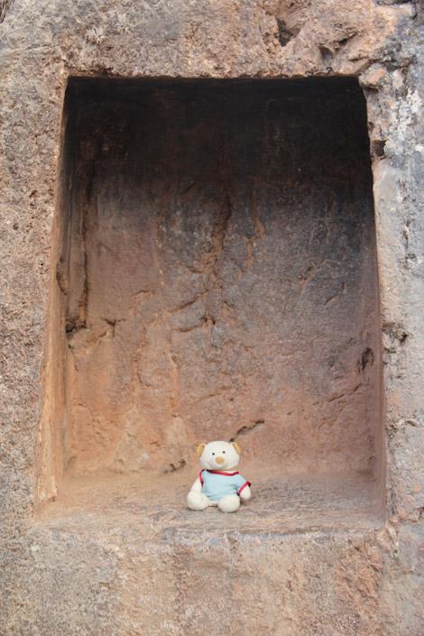 Nestor sur les sites Incas