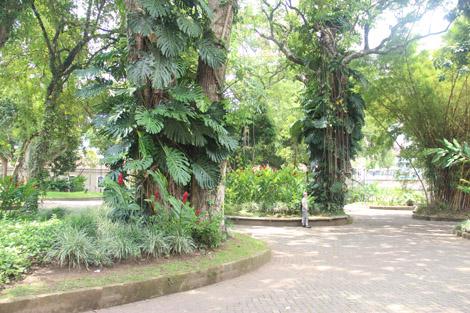 Un des quelques parcs de San José, qui annonce la couleur du pays!