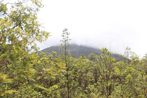 Les pentes noires de cendres du volcan Arénal : coulée de lave de 1993