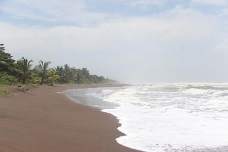 Plage Tortuguero mer des Caraïbe