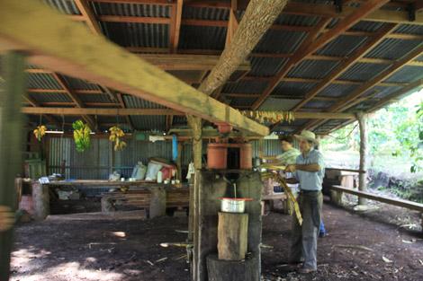 Machine à extraire le jus de canne à sucre.