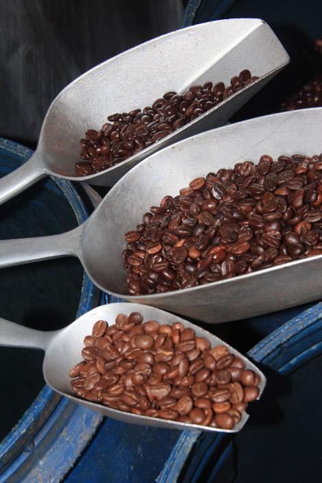 Graines de café torréfiées