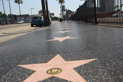 Toute une série d'étoiles!