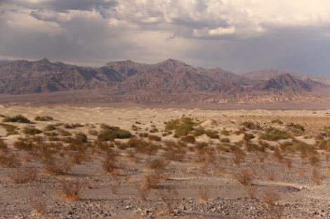 Dunes de loin…
