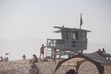 """""""Alerte à Venice Beach""""?"""
