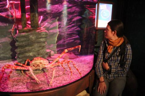 Aquarium de Sydney