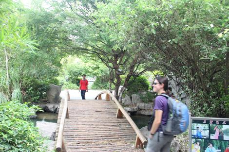 Pont de bois…