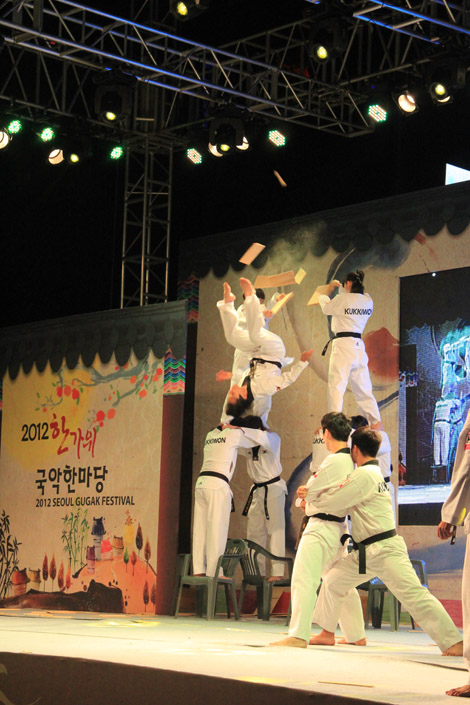 Tae Kwon Do 1