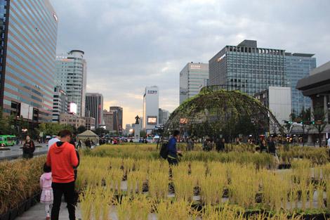 Une ville entre traditions et modernisme (ici la fête des récoltes)