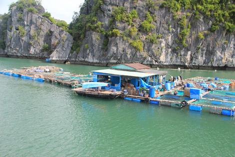 Une maison de pêcheur