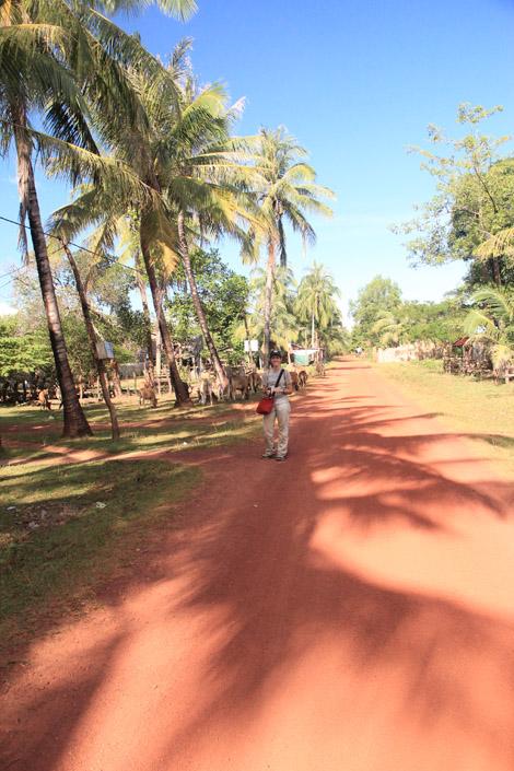 Sur le chemin des villages ethniques