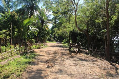 Chemin au bord du Mékong