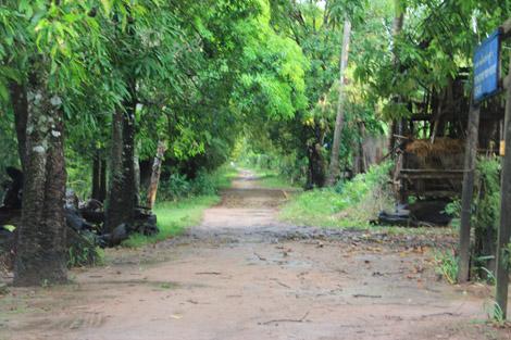 Chemin boueux de Koh Trong