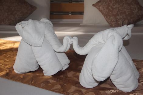 Deux éléphants dans le lit!