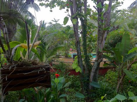 Jardin du Relax Bay