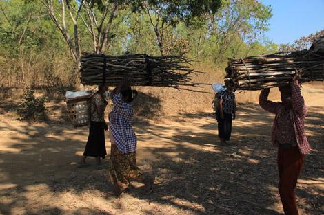 Villageois des montagnes en marche pour vendre leur bois sur les marchés du lac