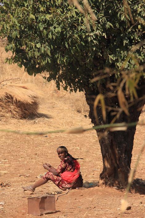 Femme sous un arbre, Udaipur