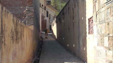 Rue du vieux village d'Amber