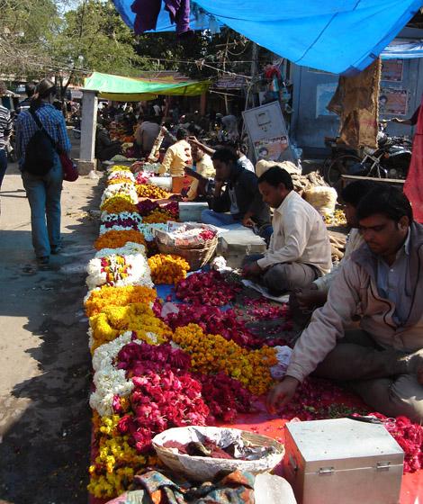 Fleurs pour les temples hindous