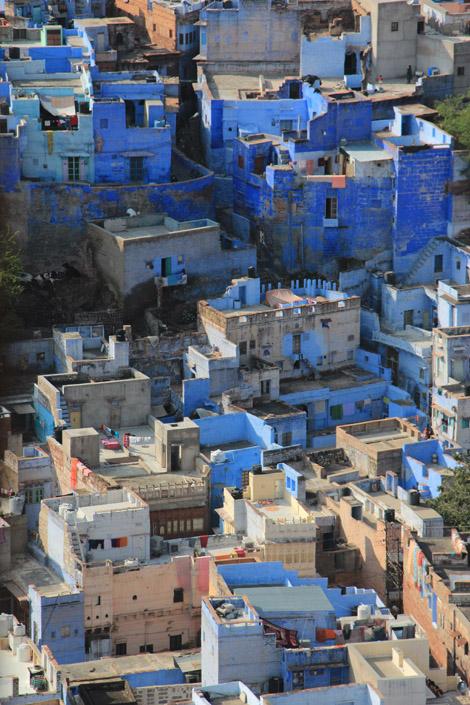 Bleu Jodhpur