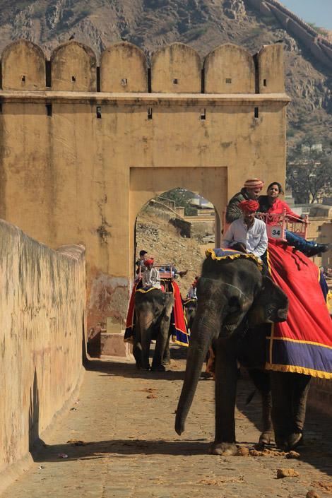 Montée en éléphant dans le fort d'Amber