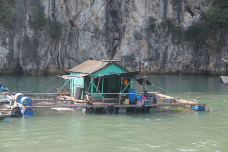Baie de Cat Ba, village de pêcheur